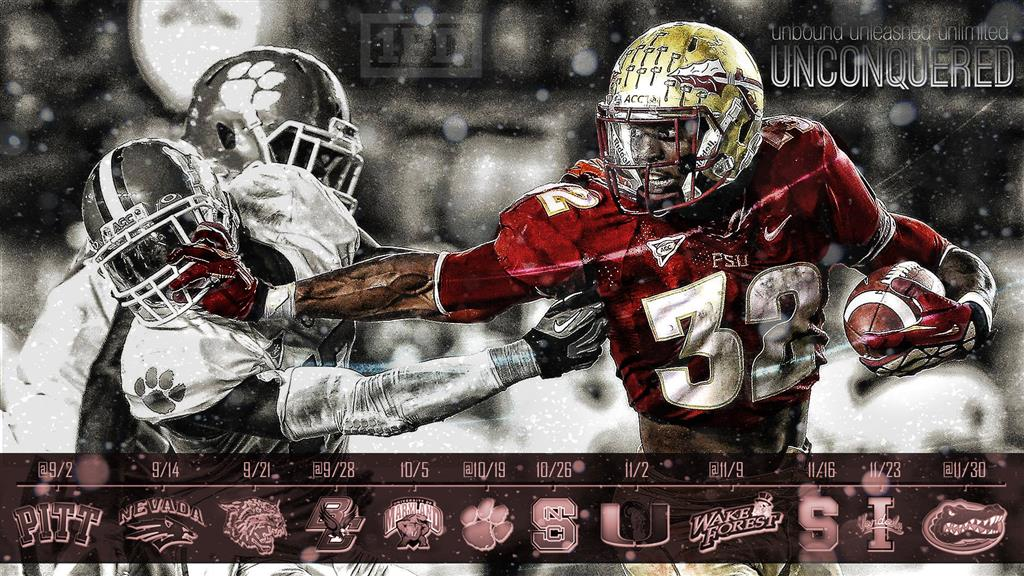 Florida State Wallpaper Copy to Clipboard