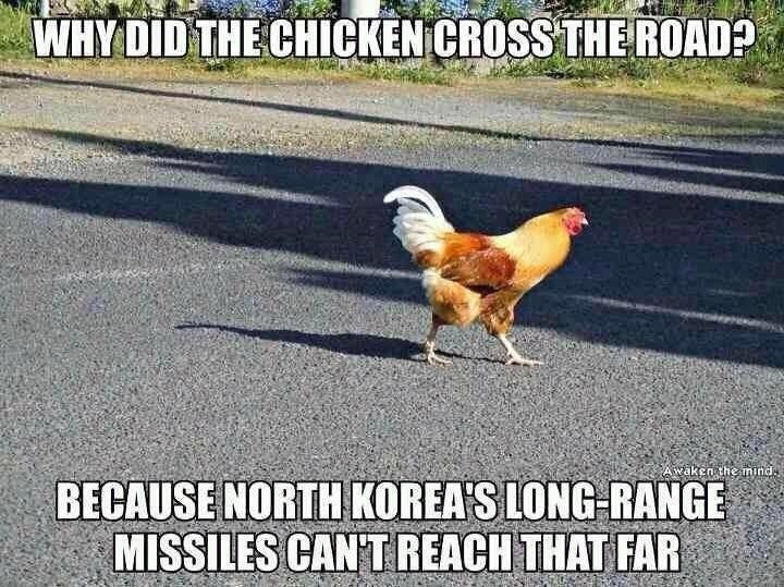 Chicken Humor Funny: Mini-Game - Why Did The Chicken Cross The Road?