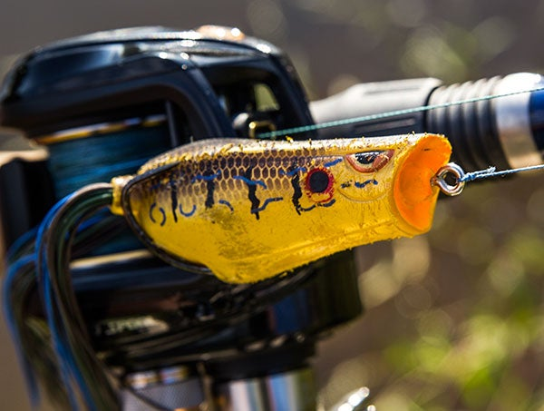 5 Must-Have Bank Fishing Baits