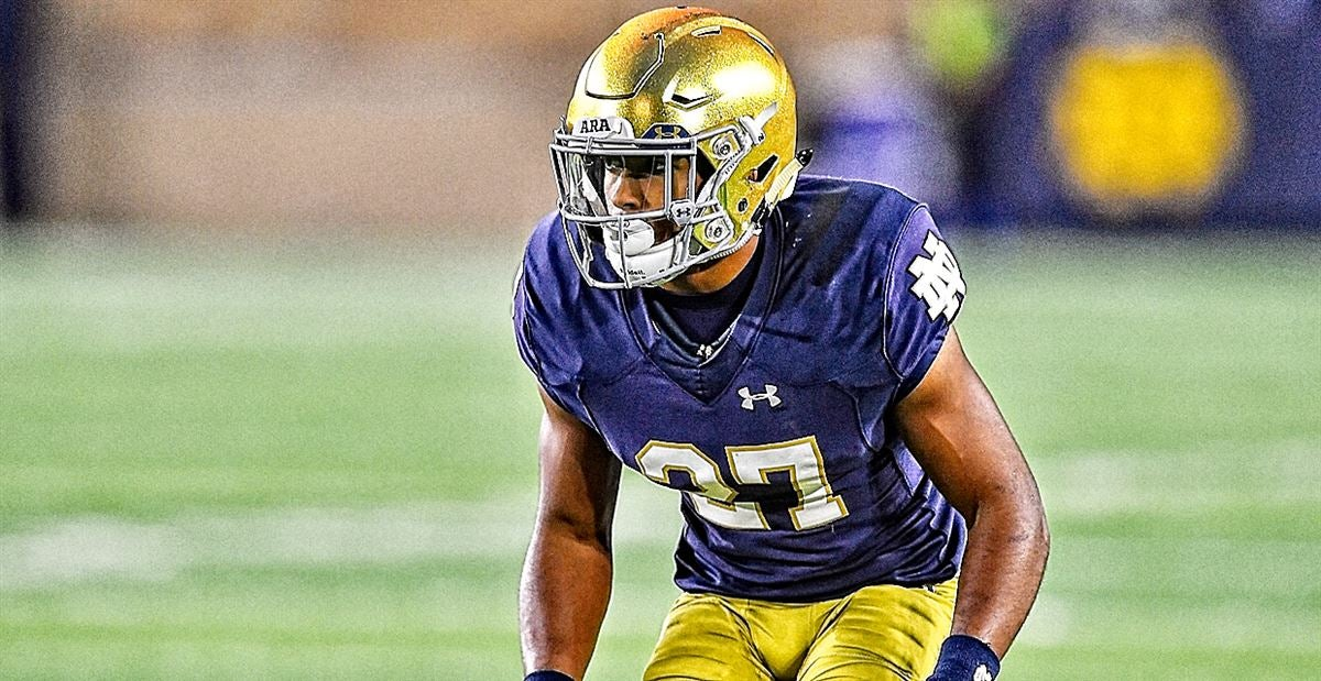 Image result for julian love notre dame