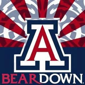 University Of Arizona Logo Wallpaper Wwwimgarcadecom Online