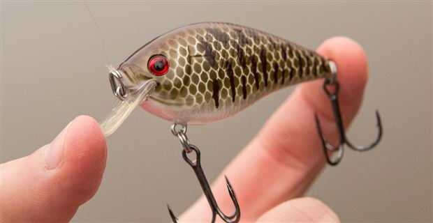 how to make a fish with effortless speed swaylocks
