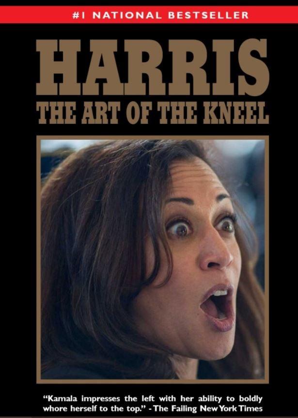 PANTS ON FIRE: Kamala Harris Lied About Abraham Lincoln and the Supreme Court (pjmedia.com)