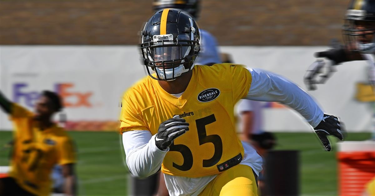 buy online 53dd1 fa530 Devin Bush ready for some football, as Steelers don pads at camp