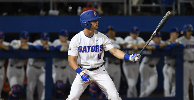 Image result for florida gators baseball