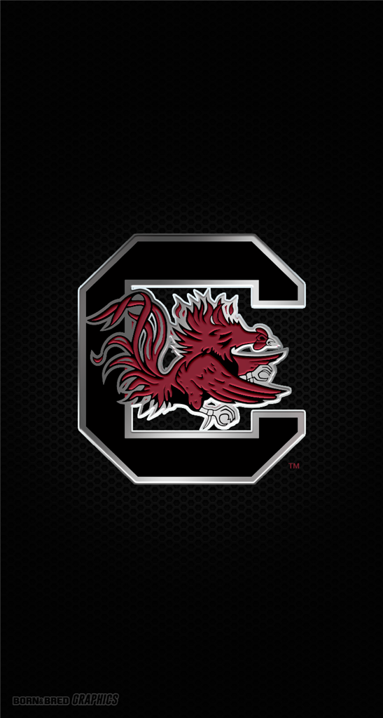 south carolina gamecocks desktop wallpaper - photo #24