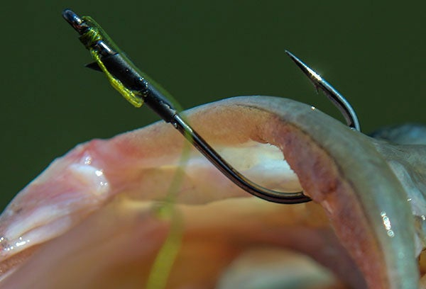 How to Choose Bass Fishing Line
