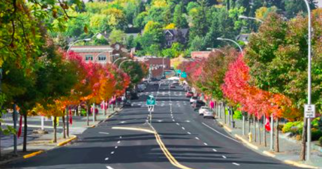 Absence of football Saturdays costs Pullman businesses millions