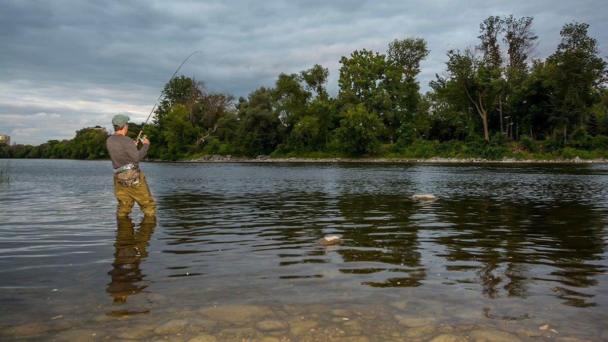 Bank fishing for river or stream smallmouths for Bank fishing for bass