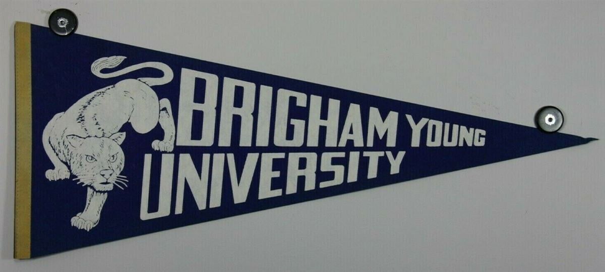 The 15 Best Byu Items On Ebay Right Now