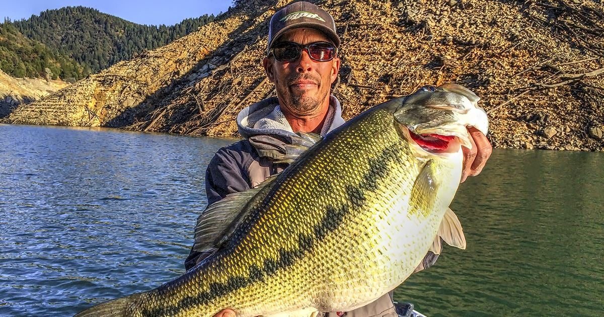 Potential world record spotted bass caught in california for Bank fishing for bass