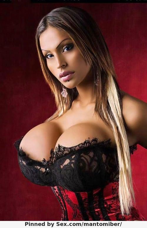 Big Tits Big Boobs 12
