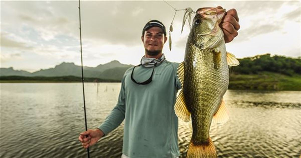Wired2fish welcomes mckeon roberts to team for Wired 2 fish