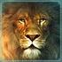 roadshow13 avatar