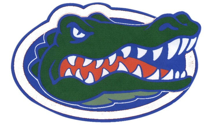 Image result for dickinson gators