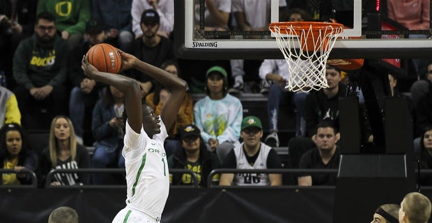 Image result for bol bol oregon dunk