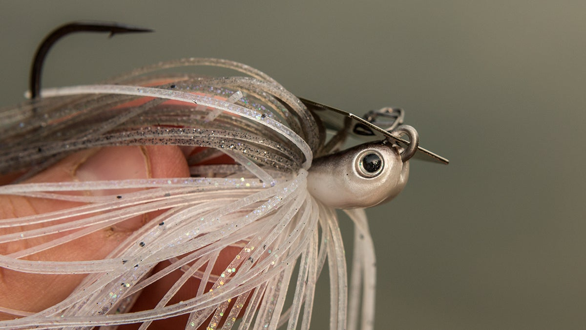 Z man evergreen chatterbait jackhammer review for Wired 2 fish