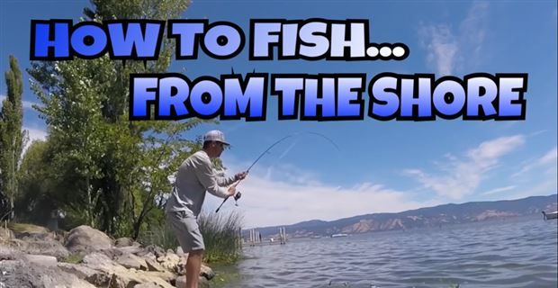 Lucky tackle box tips how to bass fish from the shore for Bass fishing from shore
