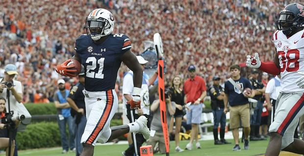 Image result for Kerryon johnson Photos