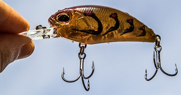 Duo realis m65 crankbait for Wired 2 fish