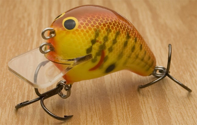 Tackle talk square bill wars continue part two for Wired 2 fish