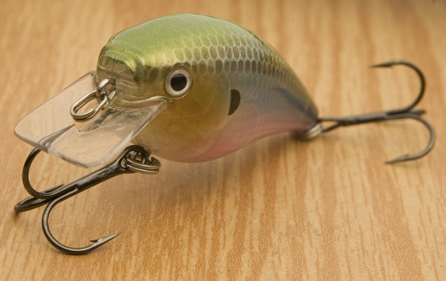 Tackle talk square bill wars continue part two for Academy fishing lures