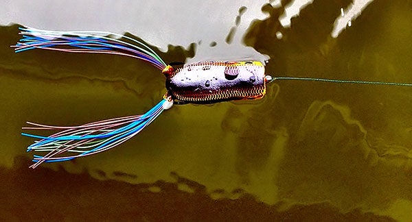 Make the most out of your bass fishing frog for Wired 2 fish