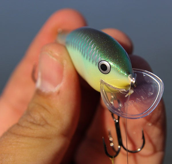 Rapala scatter rap tackle review for Wired 2 fish